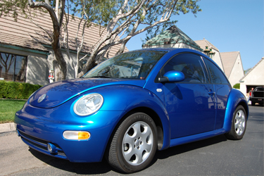 Our Beetle